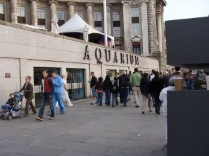 Ingresso del Sea Life Aquarium di Londra (foto di Drow male via Wikimedia Commons)