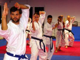 Il karate