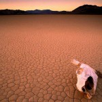 La Death Valley, tappa immancabile in un tour della California