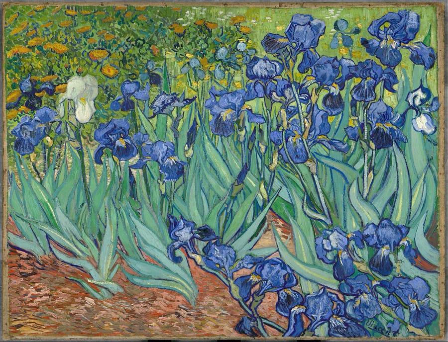 Vincent van Gogh - Iris (1889)