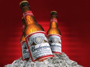 Budweiser, nota marca di birra americana