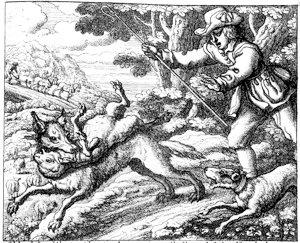 Il lupo mangia le pecora
