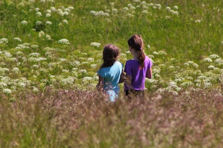 Cinque fantastiche e belle frasi sull'amicizia vera