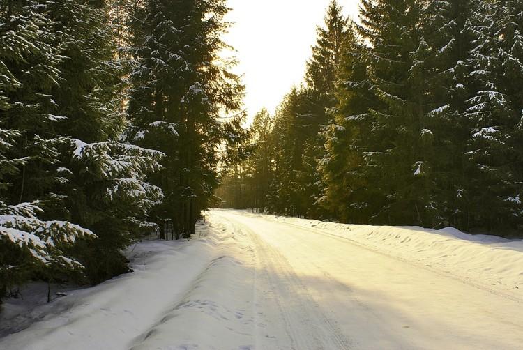 Cinque memorabili canzoni sull'inverno