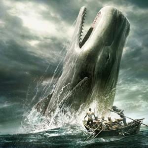 Moby Dick, la balena bianca