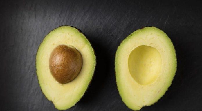 Le migliori ricette con avocado
