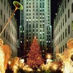 L'albero del Rockefeller Center, il simbolo di New York a Natale