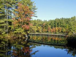 Un paesaggio del New Hampshire, uno degli stati più belli degli Stati Uniti