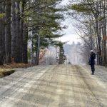 I famosi sentieri del Vermont