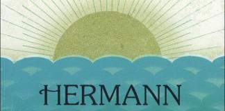 La copertina di una delle molte edizioni di Siddharta di Hermann Hesse, dalla quale abbiamo tratto alcune frasi significative