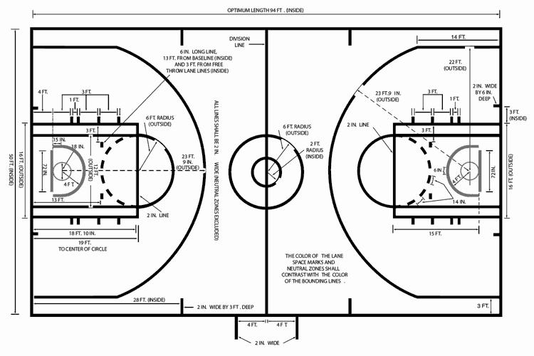 Cinque Fondamentali Regole Del Basket Spiegate Cinque