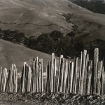 Ranch, Old Big Sur Road di Edward Weston