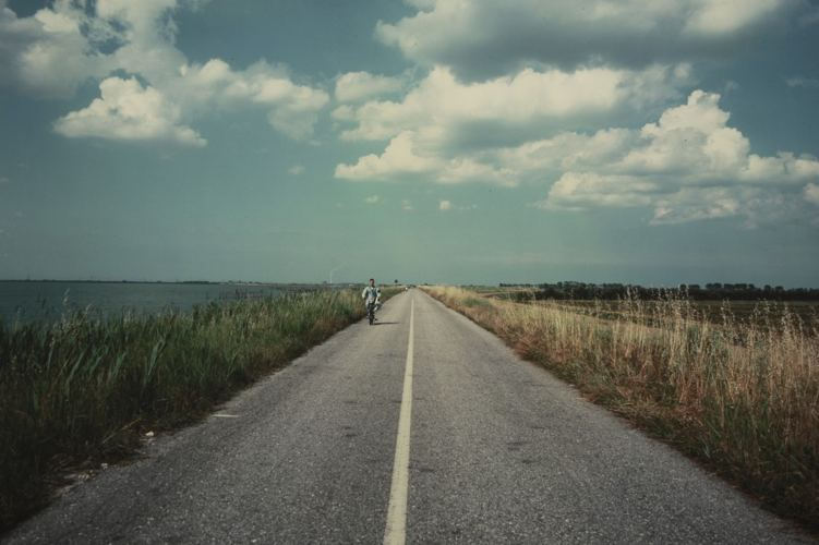 Scardovari: strada sull'argine di Luigi Ghirri