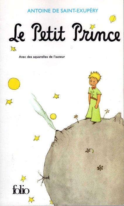 Cinque libri in francese per ragazzi studenti e for Piccolo in francese