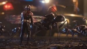 Le formiche che accompagnano Ant-Man nelle sue avventure