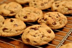 I biscotti al cioccolato fatti in casa sono sempre una sorpresa gradita a Natale (foto di Kimberly Vardeman via Wikimedia Commons)