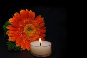 La riorganizzazione che aiuta a superare il lutto