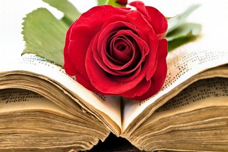 Guida ai migliori romanzi d'amore