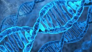 Il modello a doppia elica del DNA