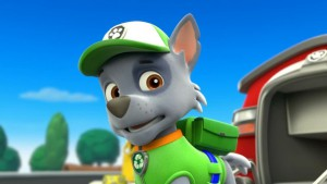 Rocky, membro della Paw Patrol
