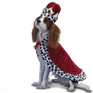 La figura del cane-re è tipica della mitologia norrena