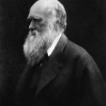 Charles Darwin ritratto nel 1868 da Julia Margaret Cameron