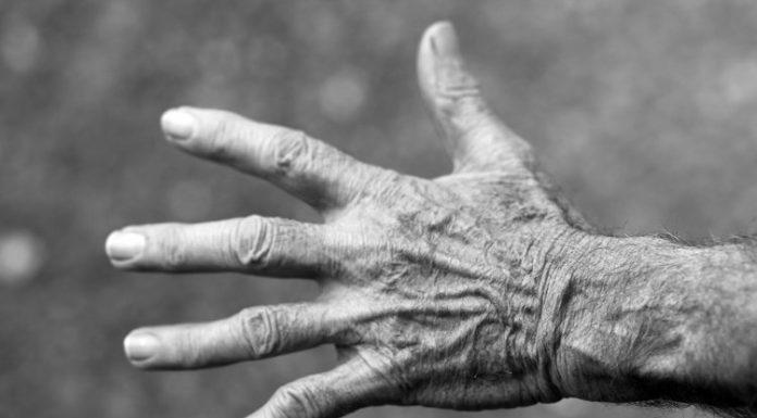 Le mani: un prodigio della tecnica, visto l'alto numero di ossa, tendini e muscoli coinvolti