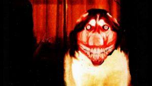 Il cane di smile.jpg