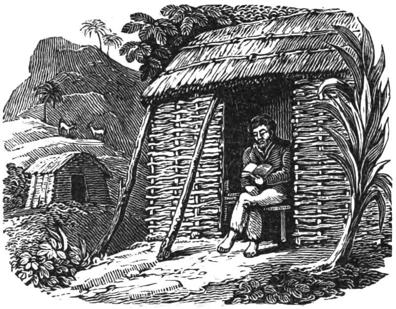Alexander Selkirk in un'illustrazione di metà Ottocento