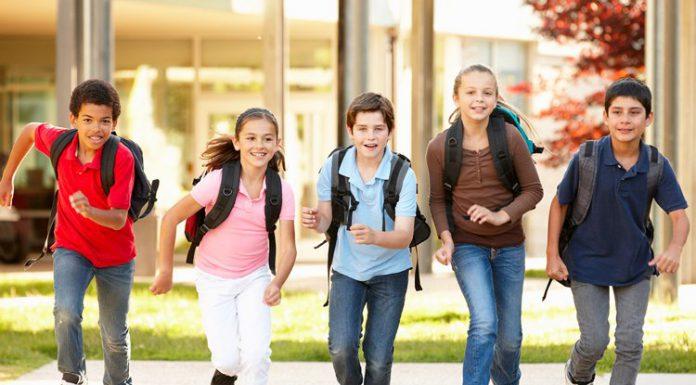 Le medie, e le materie scolastiche che vi si insegnano, sono uno snodo fondamentale nella crescita