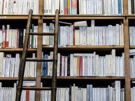 Quali sono le case editrici italiane che pubblicano più libri in un anno? Ecco le prime 30