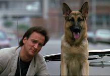 I migliori nomi per pastore tedesco, lasciandosi ispirare anche da Un poliziotto a 4 zampe e da altri film