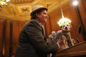"""Frida, bel nome per cane femmina ispirato alla """"sindaca"""" di San Francisco"""