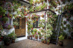 I cortili pieni di fiori di Cordoba