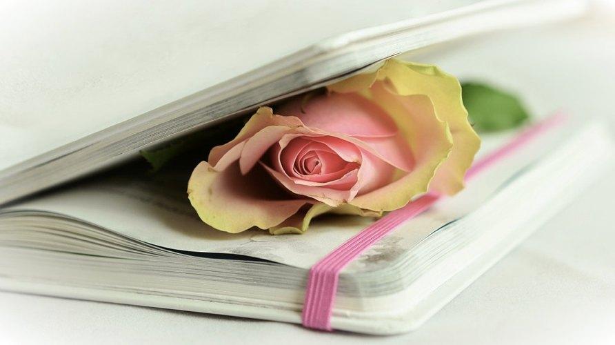 Le migliori poesie sulla poesia