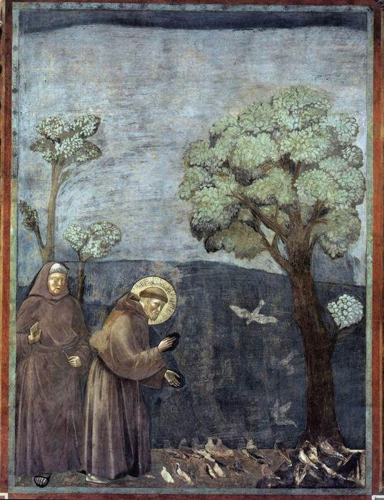 San Francesco predica agli uccelli, in un famoso affresco attribuito a Giotto