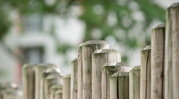 Gli steccati sono solo limiti da superare, almeno a giudicare da alcuni aforismi