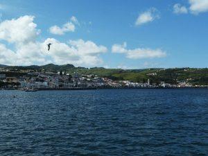 Pico, bella isola delle Azzorre
