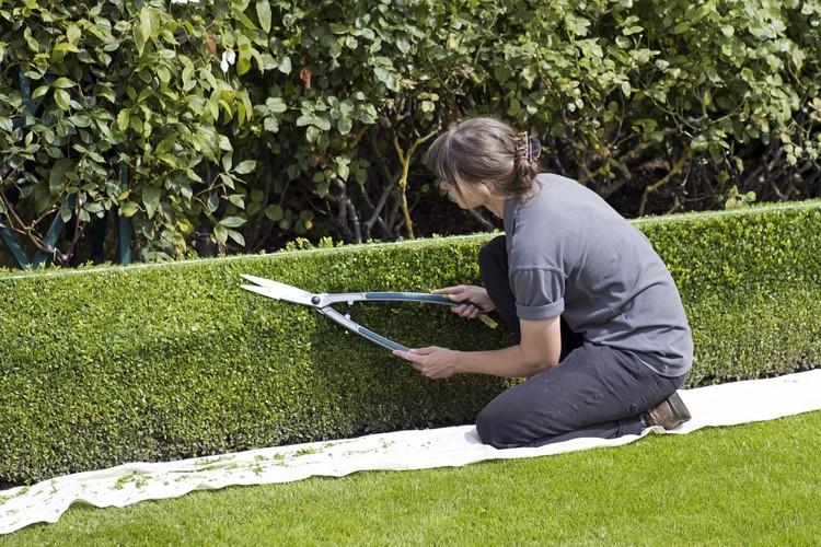 Popolare Cinque consigli per progettare un giardino fai da te - Cinque cose MQ94