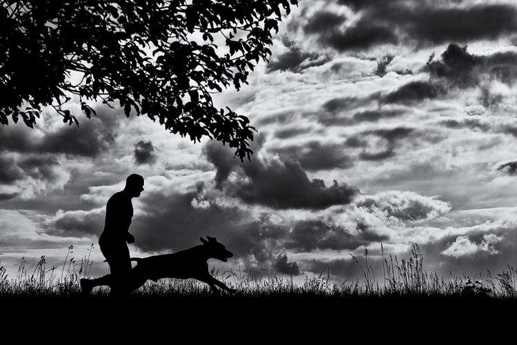 L'Ode al cane di Pablo Neruda