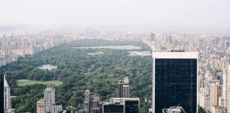Central Park, il polmone verde di New York