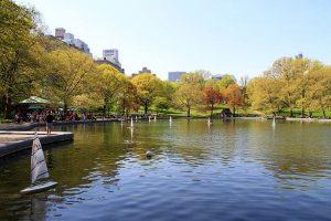 Conservatory Water, un posto che offre molte possibilità se non si sa cosa fare a Central Park (foto di Ingfbruno via Wikimedia Commons)