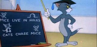 Tom insegna cosa fanno i gatti nei cartoni animati