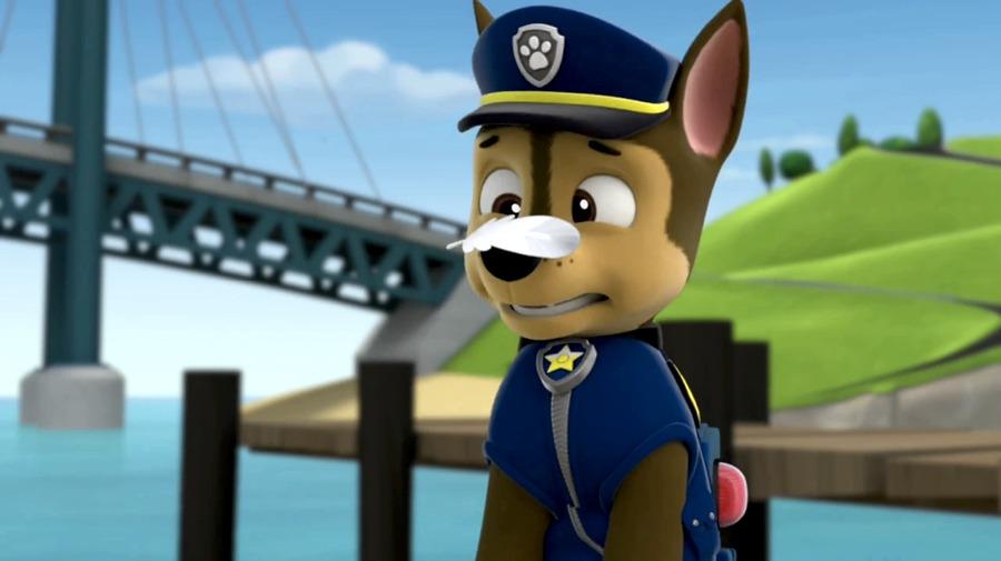 Chase, uno dei più importanti personaggi della Paw Patrol, pronto a starnutire