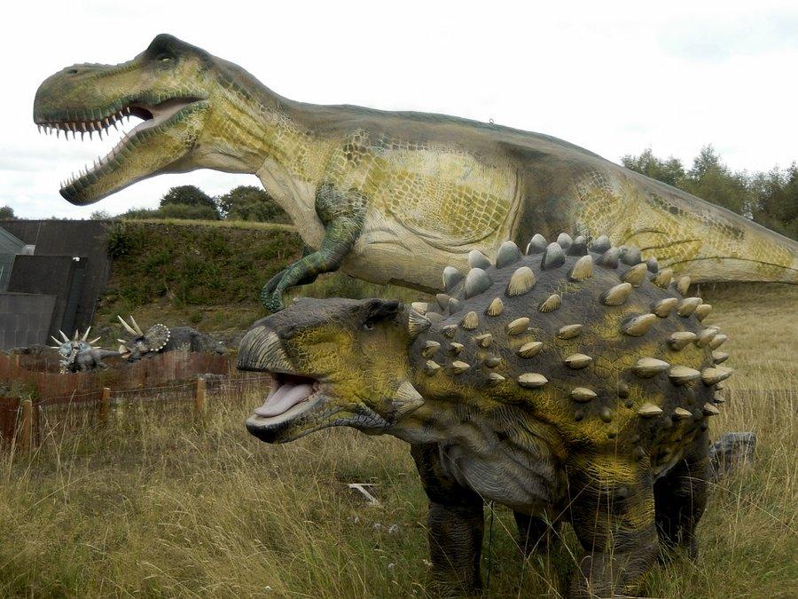 I 25 nomi dei dinosauri pi amati dai bambini cinque for Nomi dei gemelli diversi