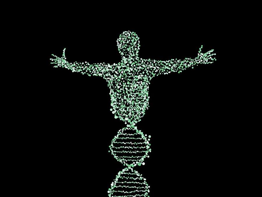 Il DNA e l'uomo