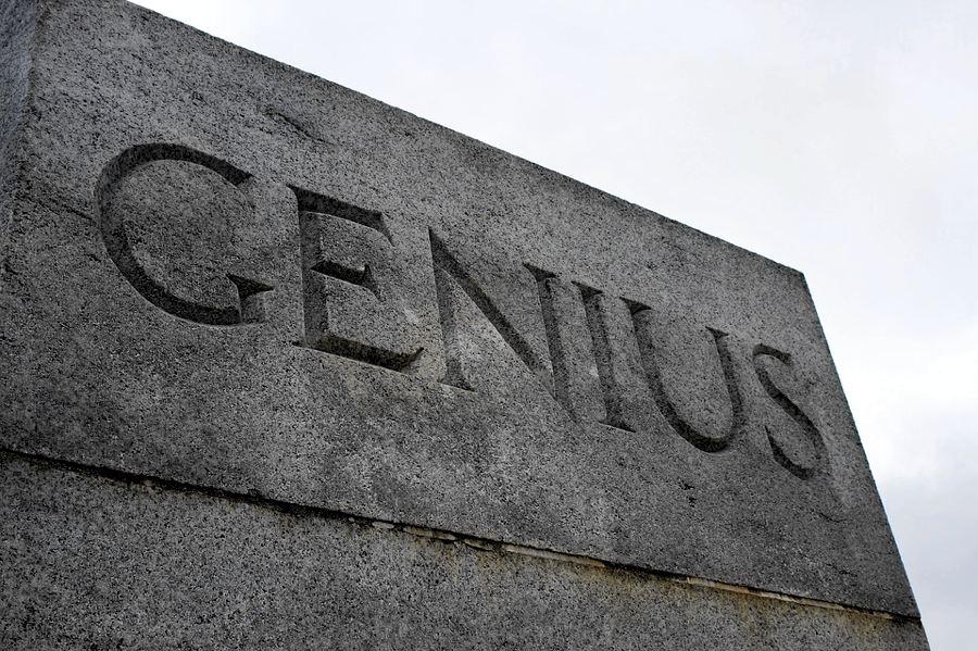 Sei un vero genio!