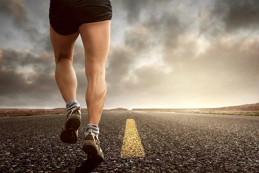 I muscoli delle gambe