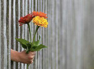 I fiori sono un simbolo classico dell'amore
