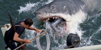 Una scena de Lo squalo, uno dei migliori thriller di sempre